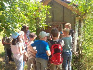 Wir untersuchen das Insektenhotel auf der BUND-Wiese