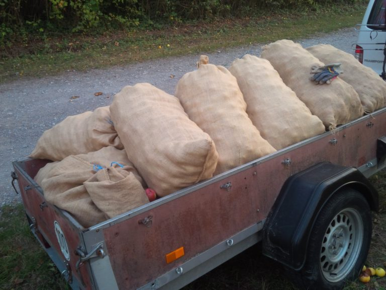 Die Ernte ist Transportbereit