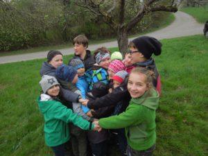 Die Gruppe stellt die Biomasse der Insekten vor 30 Jahren dar ...
