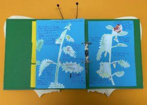 Einblick in das Naturtagebuch von Jann und Lea Eifried, Fotoː BUNDjugend BW