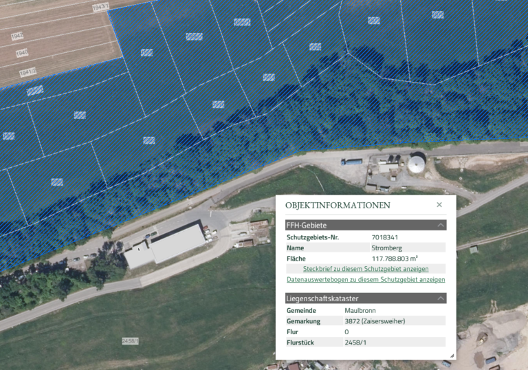 Satellitenbild FFH-Gebiet Hamberg mit Schutzgebiet (Quelle LUBW Kartendienst)