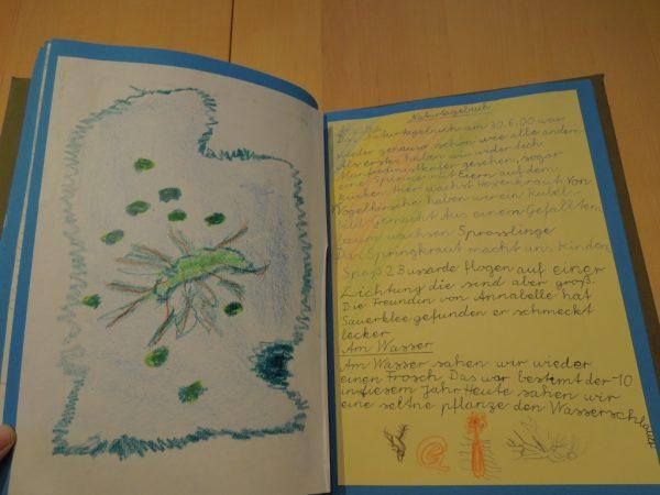 """Naturtagebuch 2000 - """"Der Hohenackersee"""""""