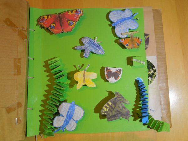 """Naturtagebuch 2005 - """"Schmetterlinge in den Wiesen am Hamberg"""""""