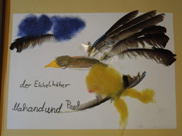 """Naturtagebuch 2006 - """"Der Hohenackersee"""""""