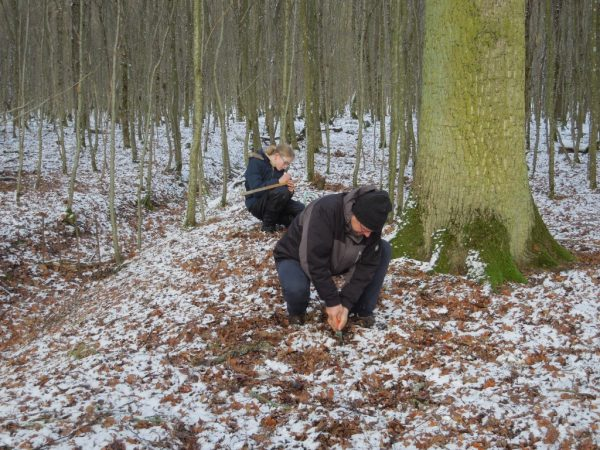 Der gefrorene Boden erschwert das Einschlagen des Lockstocks